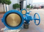 GB Marine Double Flanged Butterfly Valve with Worm Gear