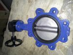 Marine Center-Pivoted Worm Manual Lug Butterfly Valve